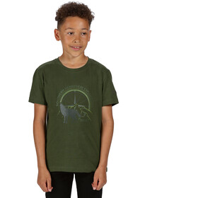 Regatta Bosley III T-Shirt Kinderen, racing green